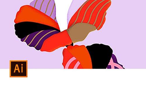 Adobe Illustrator   Adobe Creative Cloud